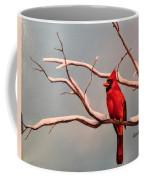 Last Snow Of Winter, Cardinal Coffee Mug