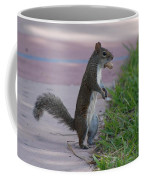 Last Squirrel Standing Coffee Mug