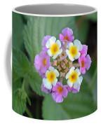 Latana Coffee Mug