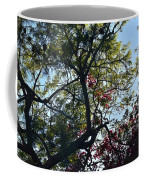 Late Afternoon Tree Silhouette With Bougainvileas II Coffee Mug