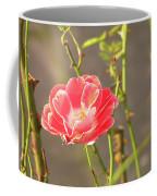 Late Beauty Between Thorns Coffee Mug