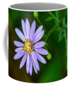 Late Purple Aster Coffee Mug
