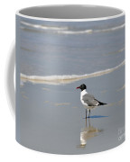 Laughing Gull Reflecting Coffee Mug