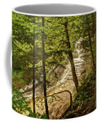 Laughing Whitefish Falls 2 Coffee Mug