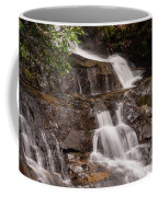 Laurel Falls Five Coffee Mug