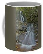 Laurel Falls Coffee Mug
