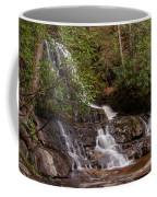 Laurel Falls Six Coffee Mug