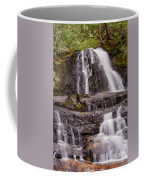 Laurel Falls Three Coffee Mug