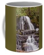 Laurel Falls Two Coffee Mug
