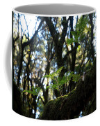 Laurisilva 2 Coffee Mug