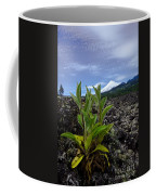 Lava And Villa Rica Volcano Coffee Mug