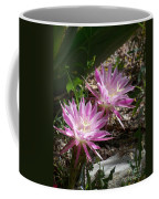 Lavendar Cactus Flowers Coffee Mug