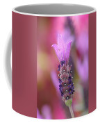 Lavendar Flower Coffee Mug