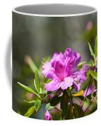 Lavender Rhododendrun Coffee Mug