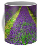 Lavender Dream Coffee Mug
