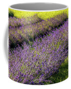 Lavender Fields Forever Coffee Mug by Kendall McKernon