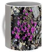 Lavender In The Rocks Coffee Mug