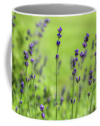 Lavender Spikes  Coffee Mug