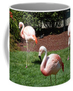 Lawn Ornaments Coffee Mug