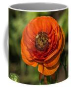 Layered Beauty Coffee Mug