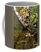 Layered Reflections Coffee Mug