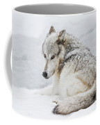 Laying Out In A Winter Storm II Coffee Mug
