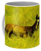 Lazy Colt Coffee Mug