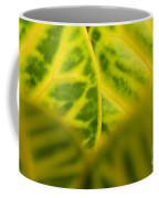 Leaf Abstract Coffee Mug