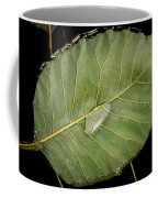 Leaf And Water Coffee Mug