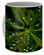 Leaf Covered With Water Droplets Coffee Mug