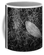 Leaf In Phlox Nature Photograph Coffee Mug