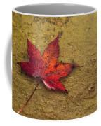 Leaf In The Rain Nature Photograph Coffee Mug
