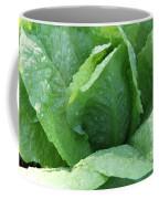 Leaf Lettuce Part 3 Coffee Mug
