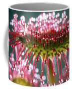 Leaf Of Sundew Coffee Mug by Nuridsany et Perennou and Photo Researchers