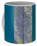 Leaf Structure Coffee Mug by Debbie Cundy