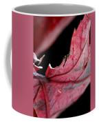 Leaf Study I Coffee Mug