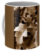 Leaf Study In Sepia IIi Coffee Mug