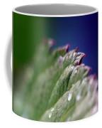 Leaf Study Vi Coffee Mug