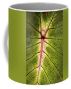 Leaf With Veins Coffee Mug