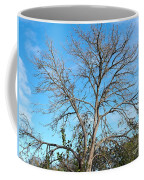 Leafless In Autumn Coffee Mug