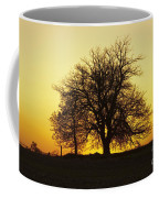 Leafless Tree Against Sunset Sky Coffee Mug