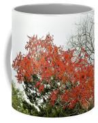 Leafs 005 Coffee Mug