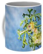 Leafy Sea Dragon Coffee Mug