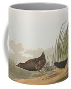 Least Water Hen Coffee Mug