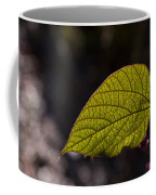 Leav Venation Coffee Mug
