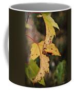 Leaves And Autumn Coffee Mug