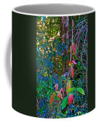 Leaves Changing Color As Autumn Approaches In Iguazu Falls National Park-argentina   Coffee Mug