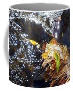 Leaves In River Coffee Mug