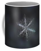 Leaves Of Ice II Coffee Mug by Alexey Kljatov