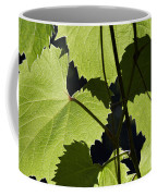 Leaves Of Wine Grape Coffee Mug by Michal Boubin